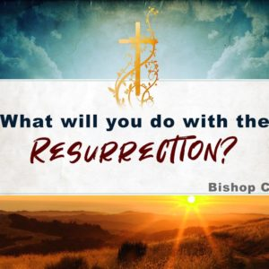 What will you do with the Resurrection? – Bishop Cluster